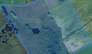 Screenshot Geoportal pl Mapa Interaktywna Działek