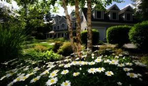 Jak zaprojektować ogród w domu